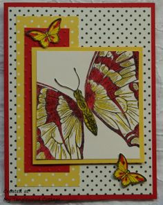 Swallowtail Stampin' Up! @ My Tanglewood Cottage
