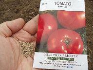 Growing Tomatoes From Seed Grow Tomatoes from Seed -