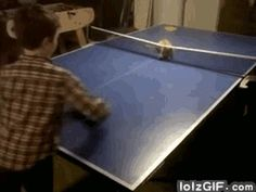 Pet cat can play !