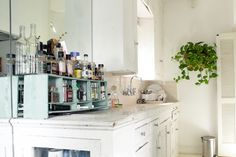 A shabby chic spice rack and Kim's prized thriving plant.
