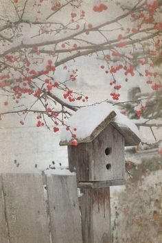 red berries and birdhouse in the snow: