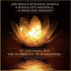 dao-dharma_11-8-o-meditacii