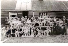 Bedlington Terrier Club -: cira 1950's