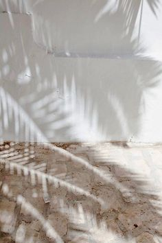 Dreaming of a vacation with sun kissed days spent lazing by the beach or pool. pictures beach palm trees Dreaming of a vacation with sun kissed days spent lazing by the beach or pool. Beach Aesthetic, White Aesthetic, Summer Aesthetic, Patterns Background, Jolie Photo, Neutral Tones, Neutral Art, Light And Shadow, Aesthetic Wallpapers