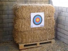 This looks like my target, didn't want to buy a real one, rather spend 10$ on hay then 50$ on a real target