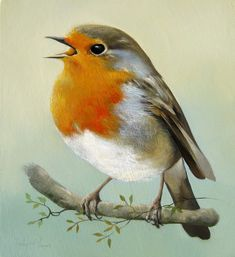 46 Ideas for red robin bird drawing - - Bird Painting Acrylic, Watercolor Bird, Stone Painting, Watercolor Paintings, Robin Vogel, Vogel Gif, Robin Drawing, Vogel Illustration, Red Robin Bird