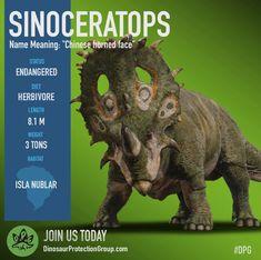 (Jurassic World Fallen Kingdom - Sinoceratops) Jurassic World Park, Jurassic World Poster, Jurassic Park 1993, Jurassic World Fallen Kingdom, Prehistoric Dinosaurs, Prehistoric Creatures, Dino Park, Dinosaur Facts, Dinosaur Drawing