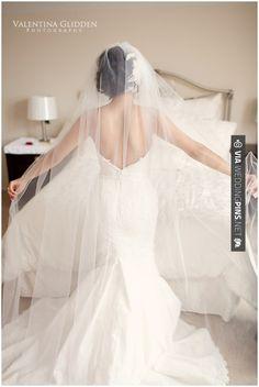 Brilliant! - Beautiful, long veil. | CHECK OUT MORE IDEAS AT WEDDINGPINS.NET | #weddings #veils #weddingveils #weddingfashion #weddingplanning #coolideas #events #forweddings #weddingheadwear #romance #beauty #planners #weddinghats #headwear #eventplanners #weddingdress #weddingcake #brides #grooms #weddinginvitations