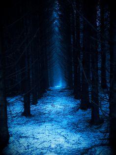 http://lovewales.tumblr.com/post/104947813998/welsh-forest-by-matt-osborne