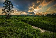 Canaan Valley in West Virginia by Randell Sanger Photography