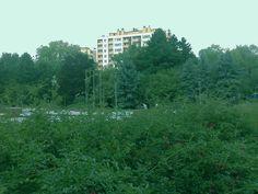 Rzeszow// Park Jednosci Polonii z Macierza//v146