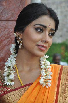 Shriya Saran In Saree New Photos