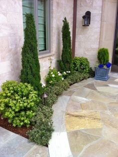 Like this shrub layout for a skinny area, maybe beneath kitchen window.