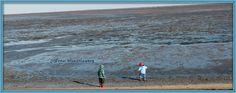 Die Wurzelwerkstatt  Kurzurlaub an der See
