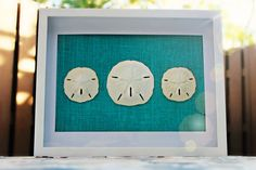 NEW BLUE Burlap Sand Dollar Wall Art White by FloridaSandDollarArt