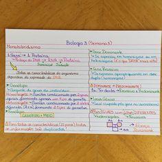 Biologia 3 - Semana 3 #pilulasemanalfb2016 #medicadivabiologia