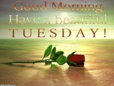 Blessings!  On this lovely Tuesday! Hugs everyone! Happy Tuesday Quotes, Happy Morning Quotes, Morning Quotes Images, Morning Prayers, Morning Pictures, Morning Pics, Morning Sayings, Morning Board, Morning Blessings