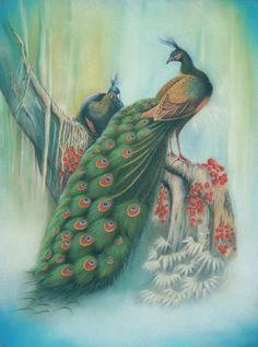 Peacocks by AmaniWarrington on DeviantArt