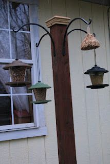 Adding a tall decorative post to the outer corner of my patio just for my bird and hummingbird feeders. Post with iron basket hooks for bird watching