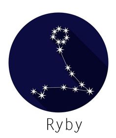 Aquarius Zodiac, Astrology Zodiac, Jewelry Findings, Stars, Drawings, Astronomy, Tik Tok, Relax, Magic