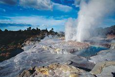 new zealand rotorua hot springs - Google-søgning