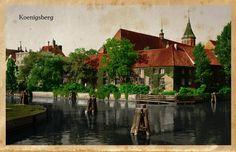 Koenigsberg Królewiec uniwersytet