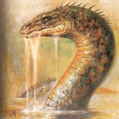 Péist, the water-beast of Irish and Scottish mythology
