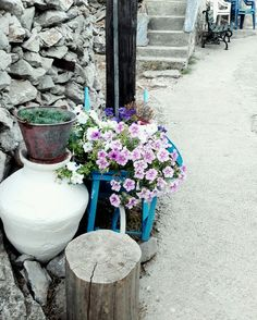 Flowers village greek island chios