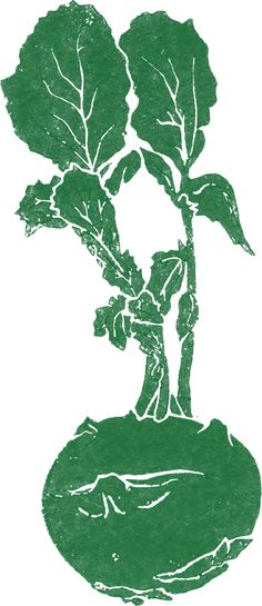 Restaurant - nachhaltig biologisch lokal saisonal fein anders günstig Bankett Crowdfunding Firmenanlass Weihnachtsfeier mieten Lokal, Hospitality, Plant Leaves, Gems, Restaurant, Plants, Banquet, Celebration, Gemstones
