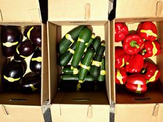 big produce donation at the Lab on Friday May 10th: tomatoes, lettuce, peppers, eggplant...