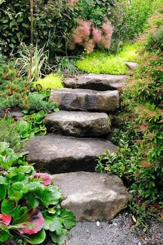 This design ideas are excellent for creating beautiful garden paths that agree with your landscape. Almost all of these examples are simple to create and would work nicely in nearly any garden design. I'm speaking about garden paths. Landscaping On A Hill, Small Front Yard Landscaping, Landscaping With Rocks, Landscaping Ideas, Mulch Landscaping, Mailbox Landscaping, Hydrangea Landscaping, Modern Landscaping, Landscape Design