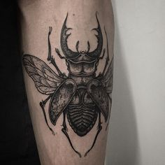 "3,557 Likes, 58 Comments - T H O M A S   B A T E S (@thomasbatestattoo) on Instagram: ""Stag beetle on forearm. Thanks again Ashley!"""