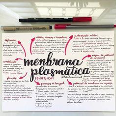 Resuminho sobre membrana plasmática 💗 . . Vou postar a p - @totalmentemed media photos videos Learn Biology, Mind Map Design, Study Cards, Study Organization, School Plan, Study Planner, School Notes, Studyblr, Study Notes