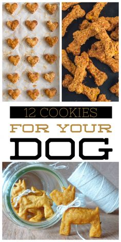 12 Cookies for Your Dog