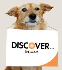 DiscovertheScam