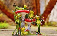 개구리, 버섯, 피규어, 그룹, 재미, 귀여운, 동물, 재미 있은