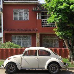 De vuelta a los 70s   Back to the 70s  #Cali #CaliAPie #CaliEsColor #beetle #volkswagen #vocho #escarabajo #fachada