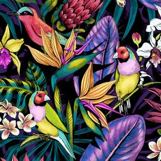 A wild tropical pattern created digitally in full color for a sports fashion brand. A wild tropical pattern created digitally in full color for a sports fashion brand. Tropical Art, Tropical Birds, Tropical Prints, Tropical Colors, L Wallpaper, Tropical Fashion, Tropical Pattern, Art Plastique, Pattern Art