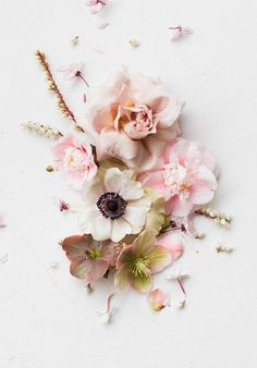flower collage with roses via Flower Collage, Flower Art, Flowers Nature, Beautiful Flowers, Floral Photography, Flower Aesthetic, Pretty Wallpapers, Flower Backgrounds, Floral Style