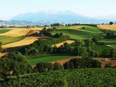 Die Fattoria La Valentina wurde 1990 von 3 Partnern gegründet.1994 wurde die Kellerei von der Familie Properzio übernommen. Nicht zuletzt trägt der Önologe Luca d'Attome aus der Toskana einen beachtlichen Teil zum Betrieb bei. Durch ihrer unermüdlichen und tatkräftigen Einsatz über die Jahre haben die Brüder mit ihren 40ha, davon 20ha gepachtet, Weine geschaffen, welche weit über die Landesgrenzen bekannt sind. #lavalentina #abruzzen #wein #merzsapori