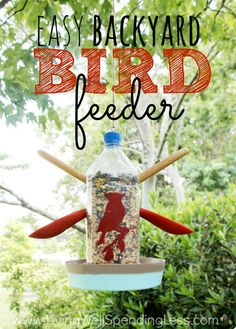 Welcome nature into your backyard with this simple but adorable homemade bird feeder. Makes a fun and easy project to fill these last few days of summer!  Plus enter to win a $100 Amazon Gift Card!