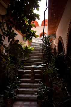 Tlamanalli in Teotitlan del Valle, Oaxaca (a beautiful restaurant owned by a famed woman chef, Abigail Mendoza)