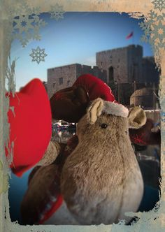 Our office reindeer headed south as he hunted for a new home, stopping in historic Castletown for a look around.