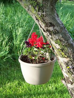 Renovators Supply offers perfect garden accessories like large outdoor planters and planter vases. Shop for white ceramic planters, pedestal planters & more! Outdoor Flower Planters, Outdoor Flowers, Hanging Planters, Hanging Baskets, Fiberglass Planters, Concrete Planters, Garden In The Woods, Garden S, White Ceramic Planter