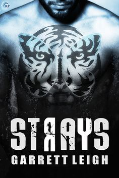 Strays (Urban Soul #2) (CrabbyPatty's Review) | Gay Book Reviews – M/M Book Reviews