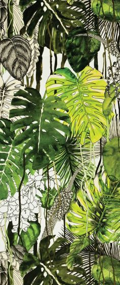 Ideia de misturar desenho, traço, rascunho com preenchimento e pintura Christian Lacroix fabric Monstera Illustration Botanique, Illustration Art, Monstera Deliciosa, Tropical Art, Tropical Prints, Tropical Leaves, Motif Floral, Design Floral, Botanical Art