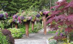 These upside-down tree flower towers are in... Alaska? - Posted on Roadtrippers.com!