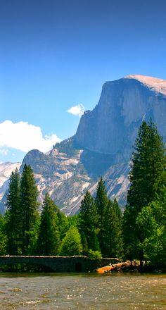 Lors de votre roadtrip sur la côte ouest américaine, faites un petit arrêt pour visiter le Yosemite Park et ses séquoias géants !