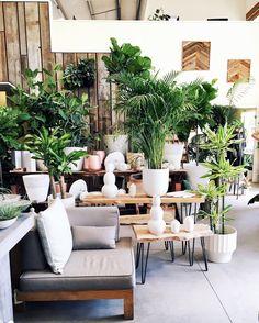 San Francisco's Flora Grubb is garden store meets coffee shop with more than enough design inspo to go around.