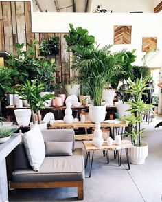 San Francisco's Flora Grubb is garden store meets coffee shop with more than enough design inspo to go around.